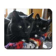 Q1 2010 Boy Kitties 002 Mousepad