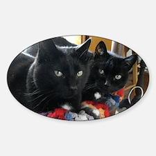 Q1 2010 Boy Kitties 002 Decal