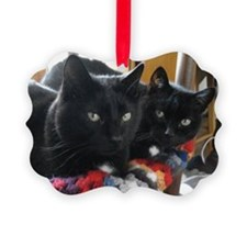 Q1 2010 Boy Kitties 002 Ornament