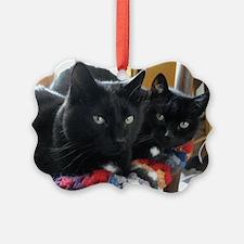 Q1 2010 Boy Kitties 002 Ornament