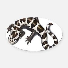 2-salamander! Oval Car Magnet