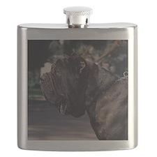 cal-8 Flask