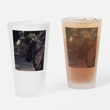 cal-8 Drinking Glass