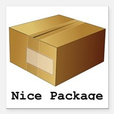 """Package Square Car Magnet 3"""" x 3"""""""