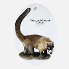 White-Nosed Coati Oval Ornament