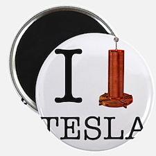 Tesla-1 Magnet