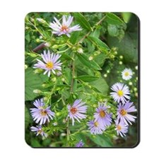 Purple Daisies Mousepad