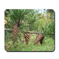 Pinecones Mousepad