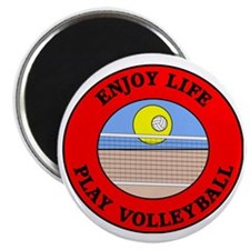 volleyball2 Magnet