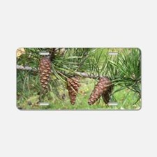 Pinecones Aluminum License Plate