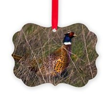 (3) Pheasant  407 Ornament