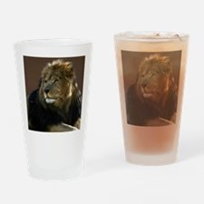Lion In Repose Drinking Glass