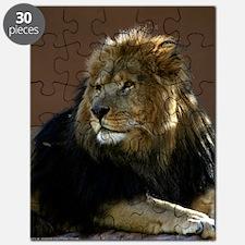 Lion In Repose Puzzle