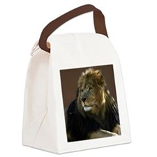 Lion In Repose Canvas Lunch Bag