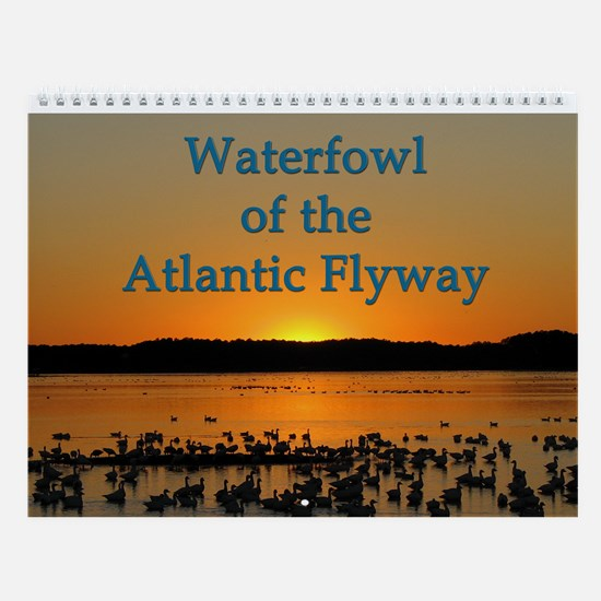 Waterfowl Of The Atlantic Flyway Wall Calendar