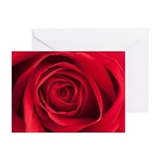 The Rose Greeting Cards, Pk 20