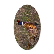 (9) Pheasant  407 35x21 Oval Wall Decal