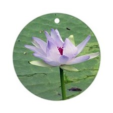 waterlily close dry brush Round Ornament
