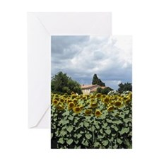 provence sunflowers painting Greeting Card