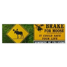 MOO8.31x3 Bumper Sticker