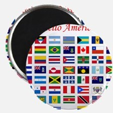 America flags pillow Magnet