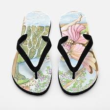 Arrival of Spring Flip Flops