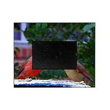 LoveBirdsLFP Picture Frame