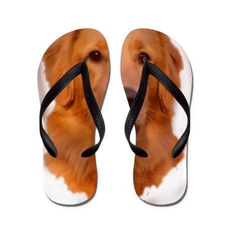 golden retriever portrait Flip Flops