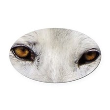 WOLF WHITE Oval Car Magnet