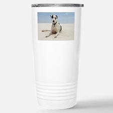 GD beach panel Stainless Steel Travel Mug