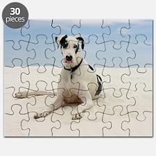GD beach panel Puzzle