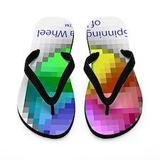 spinning_pizza_wheel_of_death_tshirt Flip Flops