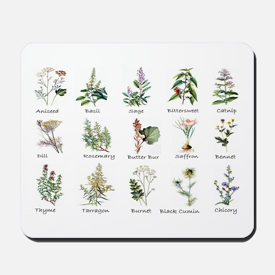 Herbs and Spices Illustrated Mousepad