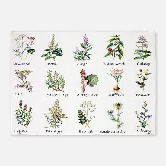 Herbs and Spices Illustrated 5'x7'Area Rug