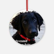 Puppy head image Round Ornament