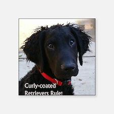 """Puppy head image Square Sticker 3"""" x 3"""""""