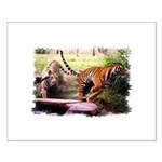 Asian Running Tigers Wild Animal Small Poster