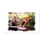 Asian Running Tigers Wild Animal Mini Poster Print