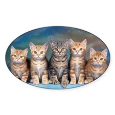 Cat Gang Decal