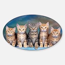 Cat Gang Sticker (Oval)