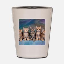 Cat Gang Shot Glass