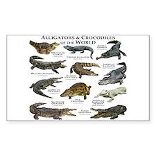 Alligator & Crocodiles of the World Decal