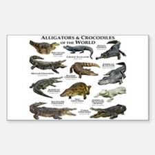 Alligator & Crocodiles of the World Decal