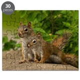 Squirrel Puzzles
