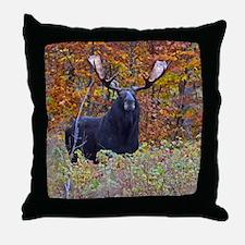 Big Bull Moose Throw Pillow