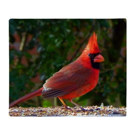 cardinalLFP Throw Blanket