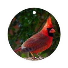 cardinalPP Round Ornament