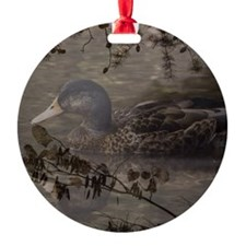Wild duck on lake design Ornament