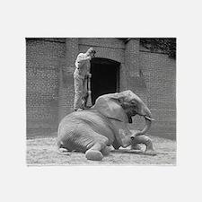 Zookeeper Sweeping An Elephant Throw Blanket