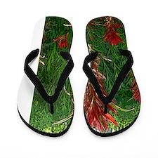 indian paintbrush Flip Flops